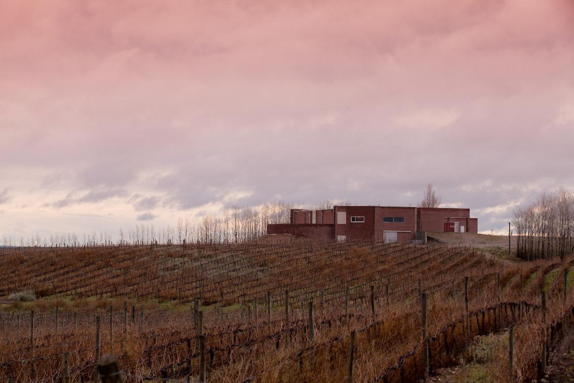 Los caminos del vino en la Bodega Secreto Patagónico