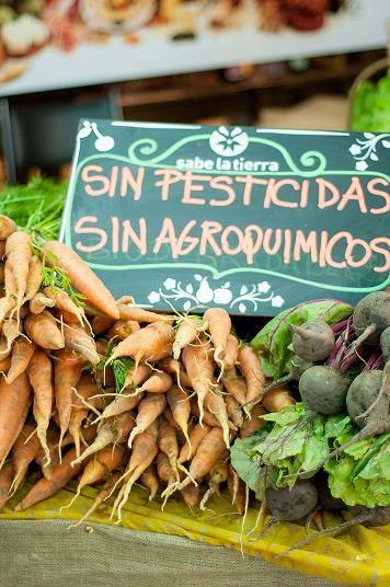 Sabe la Tierra: feria de productos orgánicos y talleres en Palermo