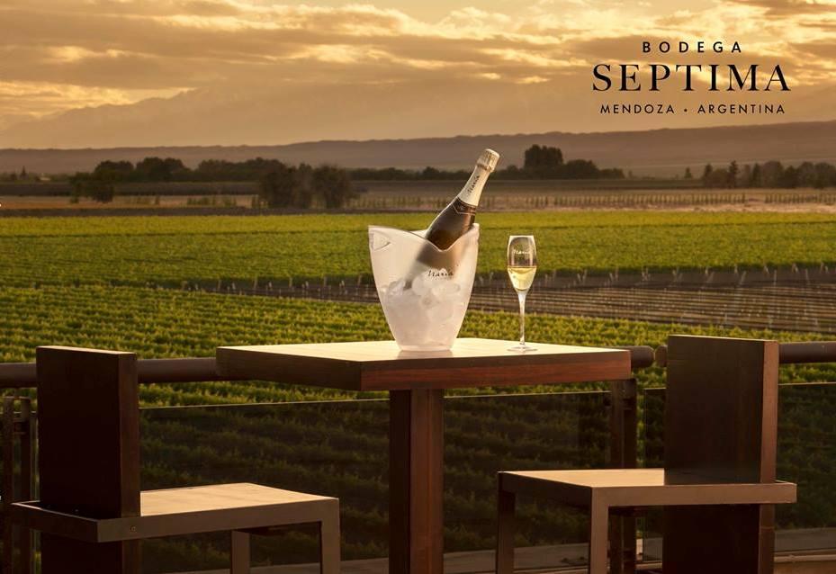 Turismo y Vino, una nueva propuesta de Bodega Séptima