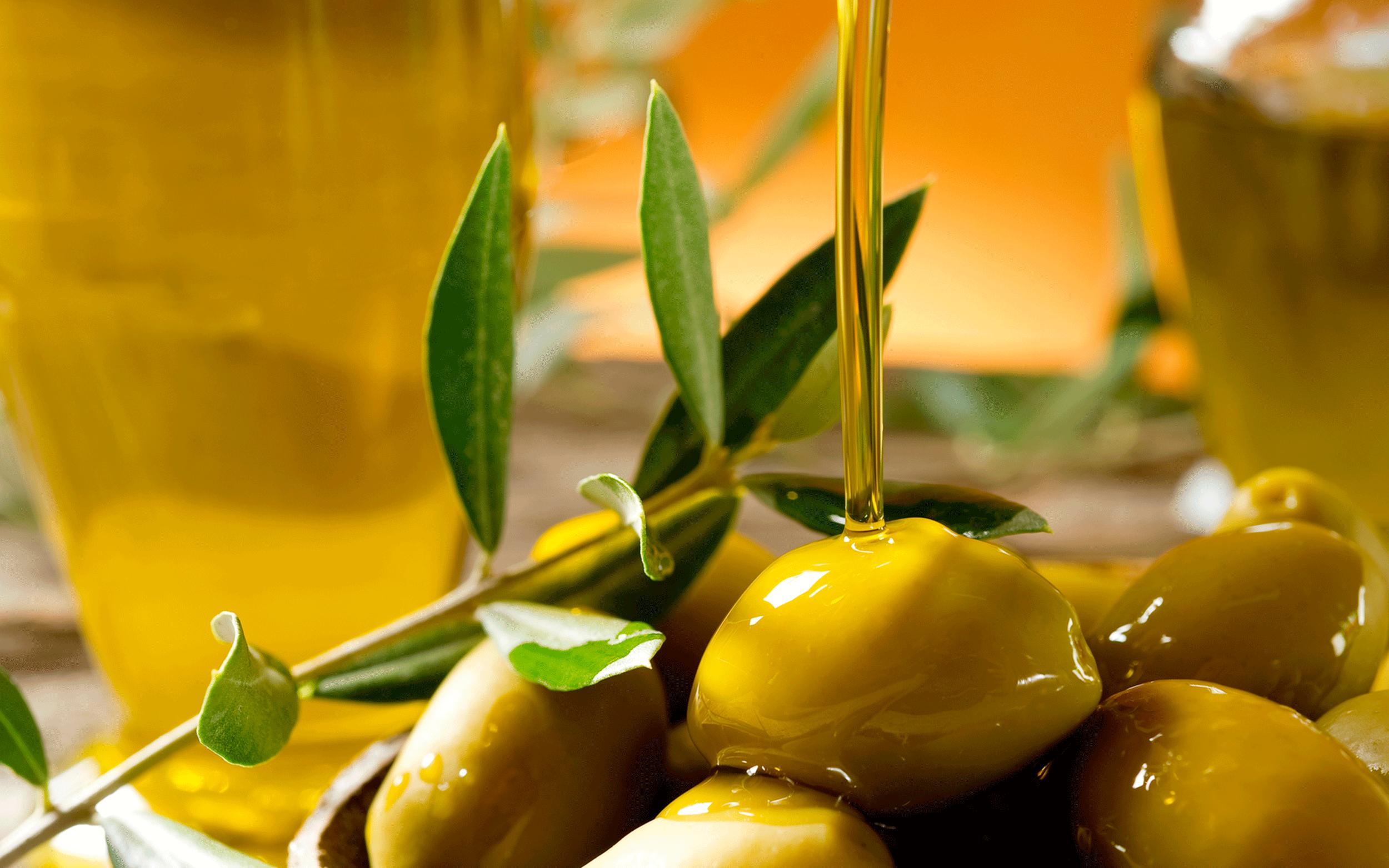 Cómo elegir el mejor aceite de oliva