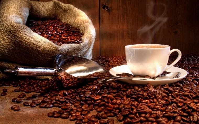 Conocé las variedades de café más populares del mundo