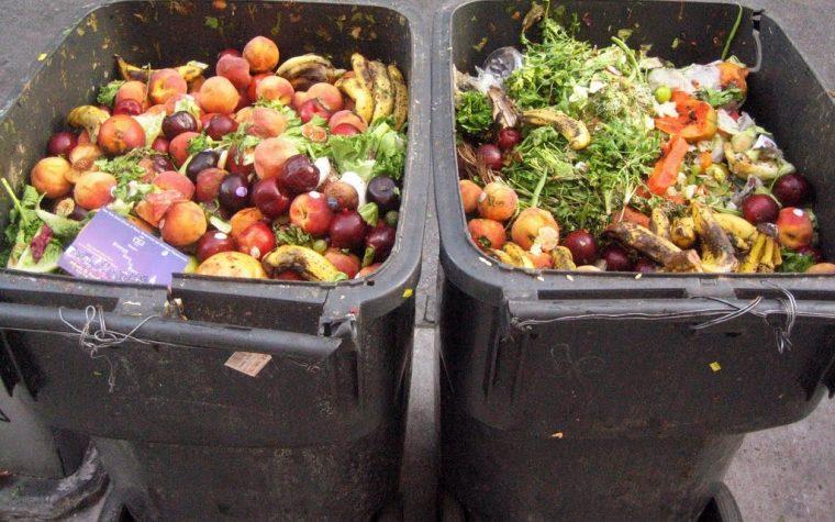Portugal lanza una iniciativa para luchar contra el desperdicio de alimentos