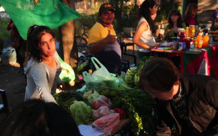 La Feria de Agronomía se agranda