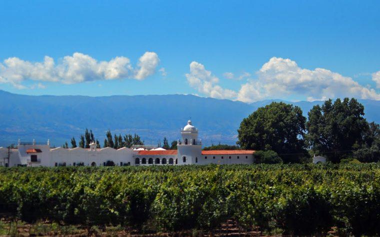 El Esteco presenta su línea Old Vines