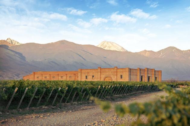 Andeluna, un vino de altura 100% malbec