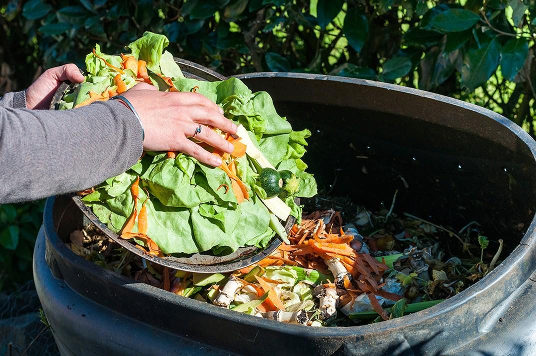 Escandaloso: Argentina desperdicia alrededor de 38 kilos de alimentos por habitante