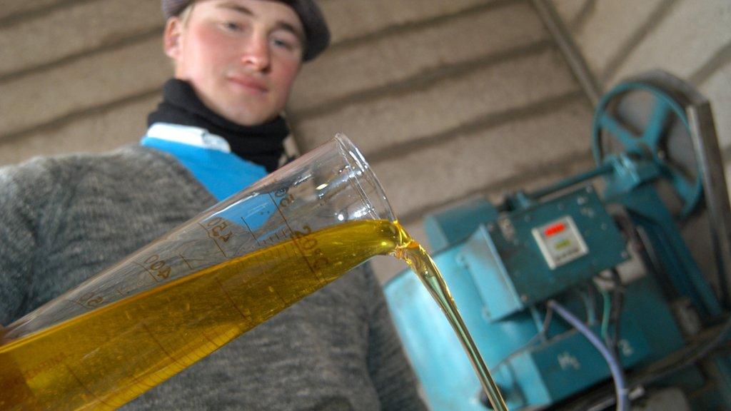 La Provincia ya desarrolla y usa biodiésel hecho con aceite de cocina usado