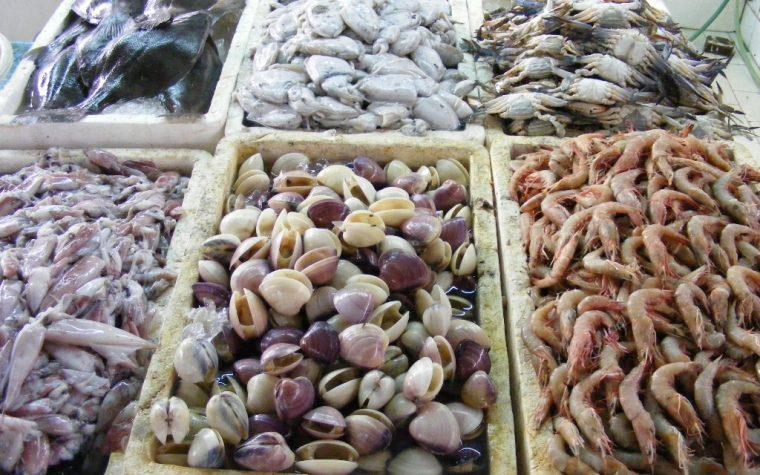 Tips para limpiar mariscos e incorporarlos a tus recetas