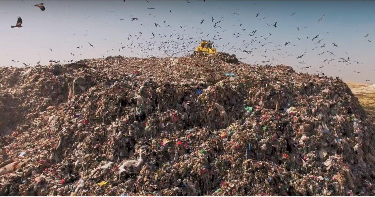 Wasted! Lo nuevo de Anthony Bourdain contra el desperdicio de alimentos