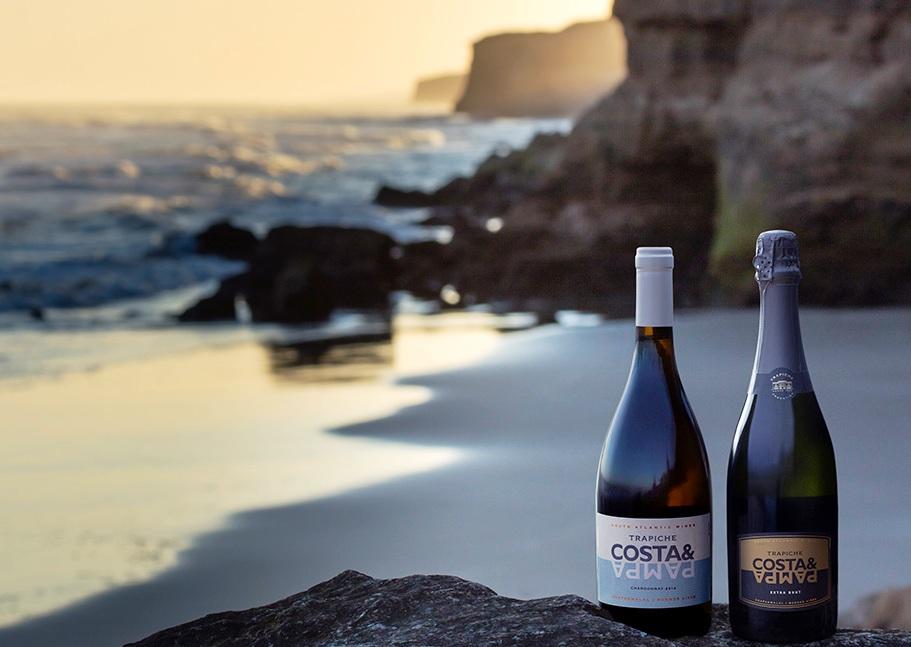 Costa & Pampa: el primer viñedo argentino ubicado junto al mar