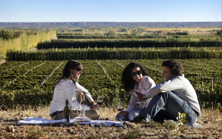Bodegas Abiertas: una visita solidaria por los caminos del vino