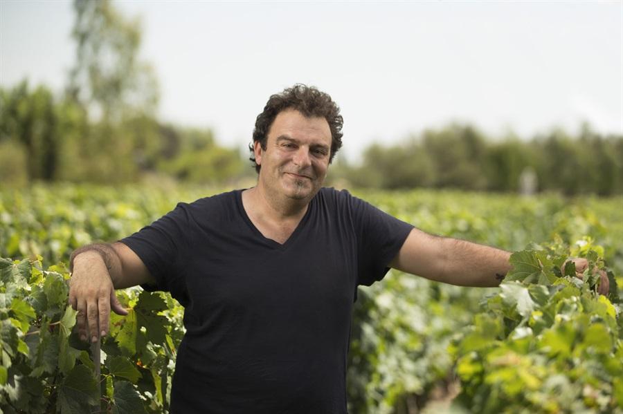 Dos vinos argentinos obtuvieron el puntaje perfecto