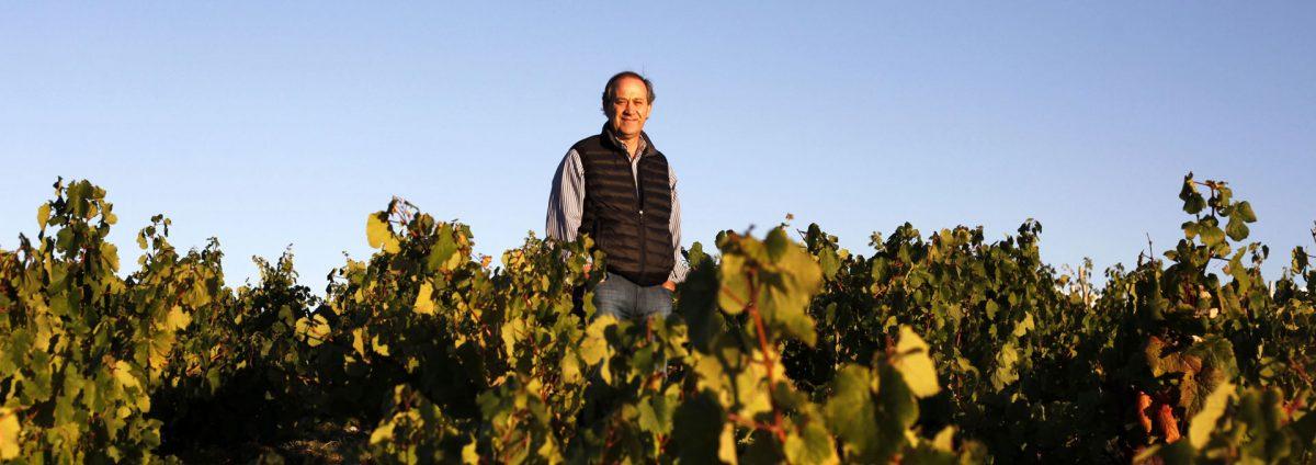 """Edy del Pópolo: """"Cuando se respeta el terroir, los vinos no deberían ser iguales"""""""